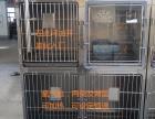 兴化同昌提供动物手术台 寄养笼 洗澡池等