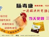 鸡群得了肠炎 顽固性小肠球虫病的治疗