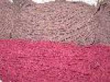 三股棉绳子 常熟彩色棉绳 空心双色棉绳 包心扁棉绳 红白束口绵绳