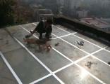 服务)郴州专业窗户渗水(楼顶漏水(服务点(24H联系是多少?