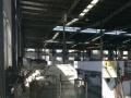 标准厂房 8000平米