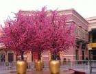 北京仿真树定做假树定做仿真树定做价格仿真树租赁