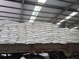 三聚氰胺 金象/玉象 源头货源 广州老牌蜜胺供应商