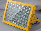 BAD(L)60防爆节能灯(LED)