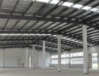 全新单一层 厂房 1000平米