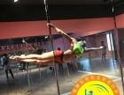 南京较好的钢管舞培训,南京九域舞蹈培训学校
