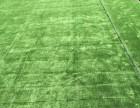 北京仿真草坪哪里卖人工草坪厂家