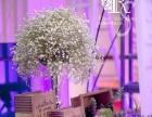 睿斯婚礼策划东豪园林酒店婚礼布置