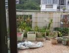 左海西湖 梅峰路 白龙山花园 复式5房 高品质小区 环境优美