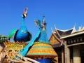 哈尔滨 万达乐园 滑雪 雪乐园 超级特价门票