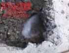 苏州漏水检测苏州地埋水管查漏苏州消防水管测漏听漏维修