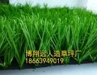 葫芦岛人造草坪编织厂家
