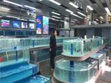 郴州超市海鲜鱼池厂家超市水产玻璃活鱼池价格