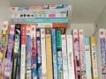 出书,言情,名著,漫画,文学
