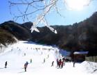 济南寒假冬令营-济南滑雪冬令营-小硬汉军事冬令营就是好!