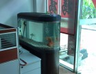深圳有水族鱼缸买的吗 哪里有二手鱼缸买 有上门定做鱼缸吗