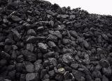 供应进口高硫石油焦生焦价格便宜
