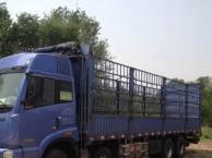 马壮二手车出售各种大货车办理二手车贷款