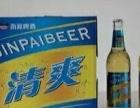 商超啤酒 夜场啤酒 流通啤酒 啤酒批发