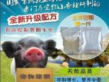 寵物小香豬吃什么好,需要打疫苗嗎