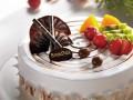 6家哈尔滨面包新语蛋糕店生日蛋糕同城配送慕斯芝士鲜奶油水果