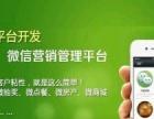 自贡专业手机微信平台网站开发建设服务热线