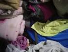 深圳旧衣服回收