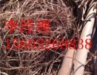 东阿废电缆废铜回收高价