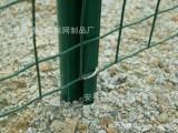 贵阳安顺市涂塑焊接铁丝网 小区隔离荷兰网 道路中央隔离防跨护栏