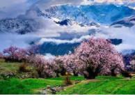 川藏线旅游,拉萨林芝畅游,泸州全球通旅行社报价优