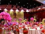 文津国际酒店 文津国际酒店诚邀加盟