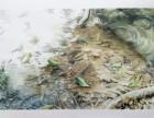 某某画苑水彩培训班 共你描绘水色里的奇光异彩