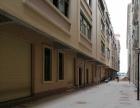 出租海丰城东整栋厂房铺面仓库东维亚国际工贸园