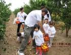 上海周邊農家樂推薦 吃土菜釣大魚采桔子 游滴水湖海邊