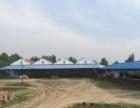 榆树新立镇 厂地 12000平米 冷库,保鲜库,地下库。