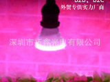 LED射灯 5W植物灯3红2蓝 花卉补光