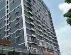 琅东站附近 87~1500平米一二楼临街商铺首租