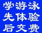 江门蓬江区游泳培训 成人学游泳 小孩学游泳