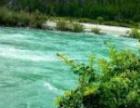 雅鲁藏布江大峡谷、南伊沟一日游