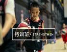 巨阵星团青少年篮球培训
