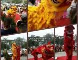 北京开业庆典开场舞狮小丑表演近景魔术表演团队承接演出