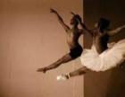 中山商业舞蹈编排,专业舞蹈培训