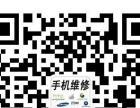 祁阳苹果手机维修iphone ipad维修.换屏.