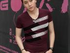 2013新款夏装男士v领短袖t恤男潮男个性韩版修身半袖潮流体恤混批
