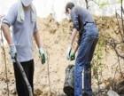 卢湾区黄陂南路清理隔油池 清理化粪池 管道疏通检测快捷