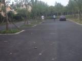 闵行瑞桥驾校就近学车随到随学