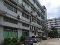 沙二蓝天科技园一二楼整层1100平精装修厂房出租