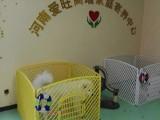 24小時寄養服務-愛旺家庭寄養中心