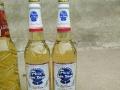 蓝轩啤酒柳州办事处诚招柳州各县区代理商。