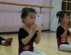 少儿芭蕾、中国古典舞、名族民间舞、戏曲武打表演
